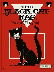 black cat rag cover