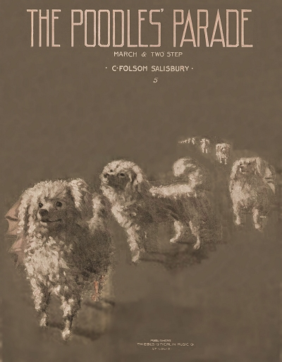 poodles on parade cover